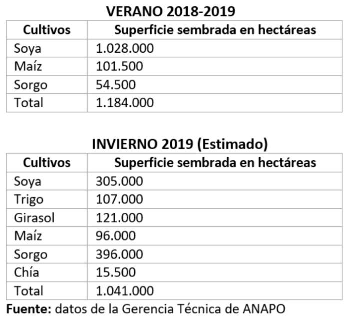 Superficie sembrada, 2018 y 2019